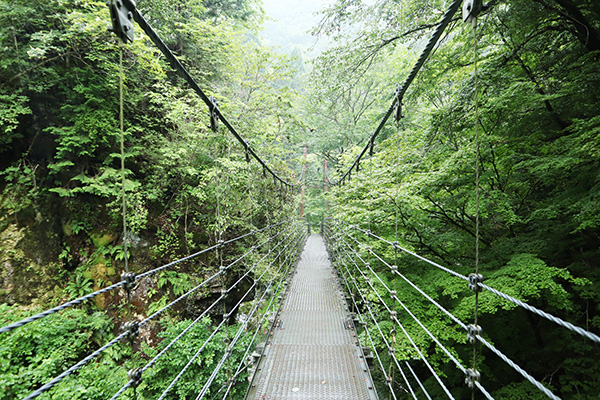 原不動滝への道「かえで橋」