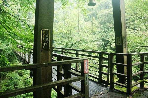 原不動滝への道「奥かえで橋」