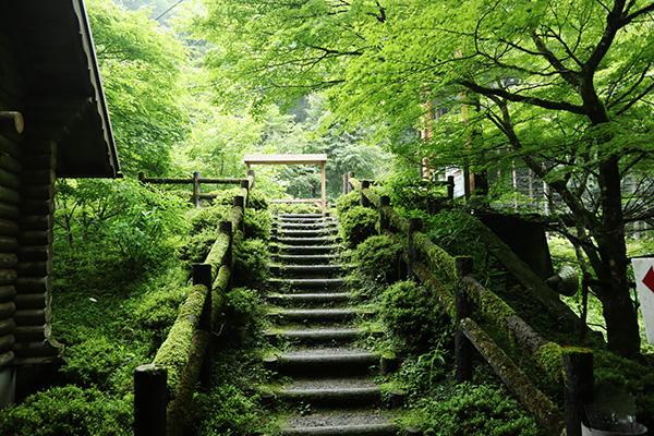 原不動滝への道