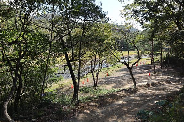 ちいさな森キャンプ場/川横のサイト