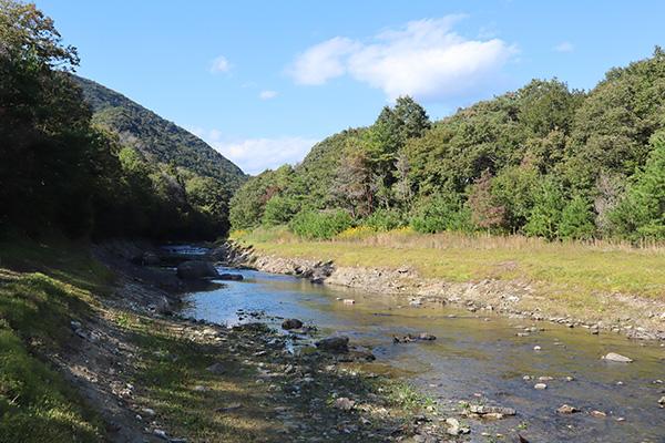 ちいさな森キャンプ場の川