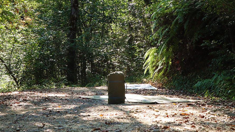 ちいさな森キャンプ村のちょっとワイルドなサイト