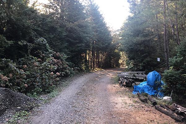 ちいさな森キャンプ場の川側のサイトへ降りる坂道