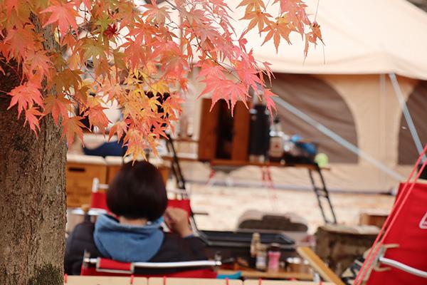 紅葉の中まったりキャンプ