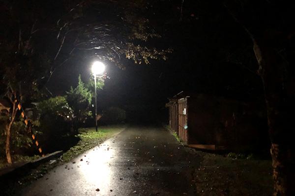 南光自然観察村の夜