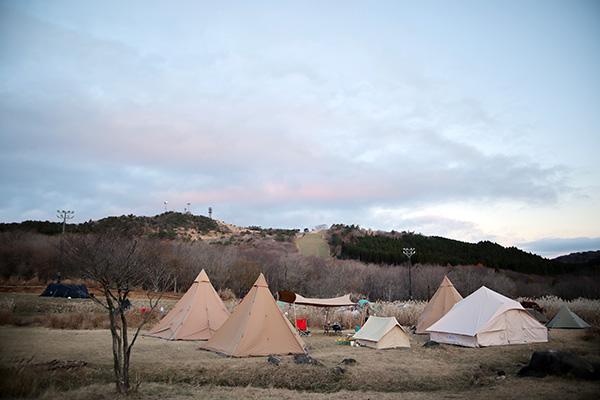 峰山高原/星降る高原キャンプ場