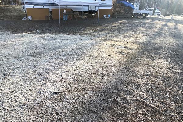 霜が降りた芝