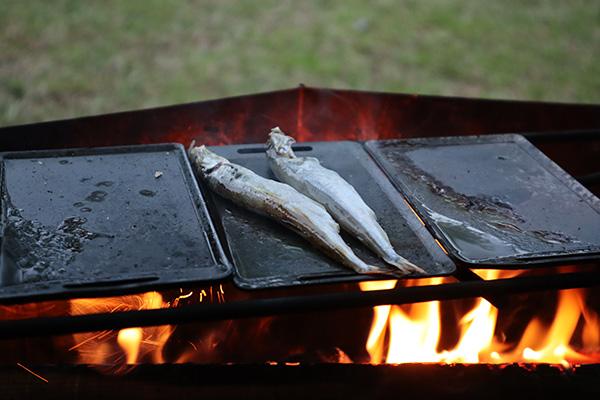 ミニ鉄板でシシャモを焼く/焚火調理