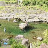 冷たい水にひゃっほー!天川村庵の郷で川遊びキャンプ!