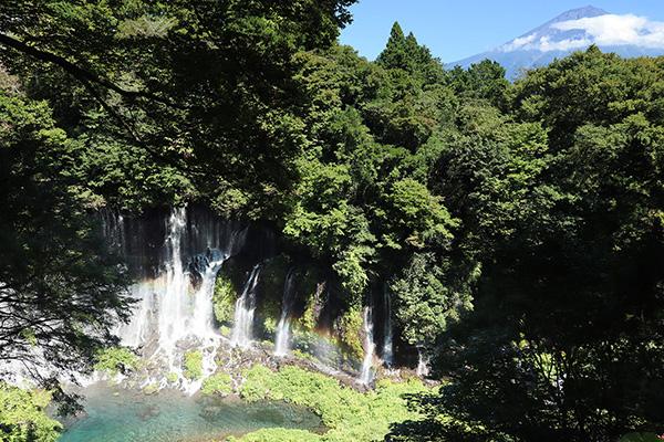 見下ろす白糸の滝と富士山